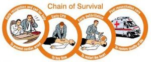 Call for help Early CPR Early Defibrillation Survival